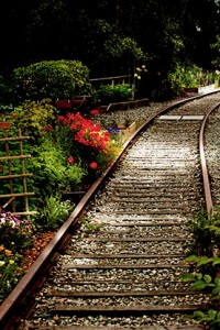 Vancouver: Walking the Tracks in Kits