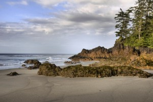 Living Free. Northwest Vancouver Island