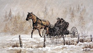 Horse and Buggy southern Alberta 1905