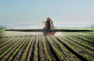 Tractor fertilizes crops adding to soil mineral depletion