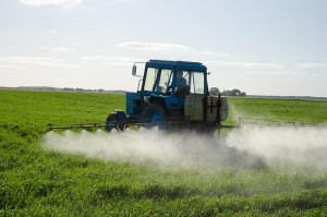 Tractor spray fertilize field with Synthetic Fertilizers & chemicals